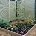 竹垣が見えてスッキリとしたお庭になりました。