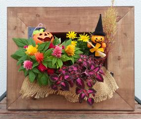 ミニチュアガーデン作品例(写真はイメージです。植物の種類は市場状況により決まります)