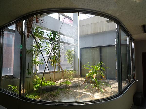和とモダンが調和する庭 – 大阪府大阪市 T興業様の施工前