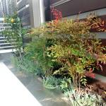 フェンス前には植栽スペース。