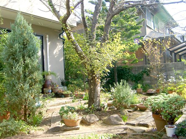 春が待ち遠しくなるお庭~高石市S様邸の施工前