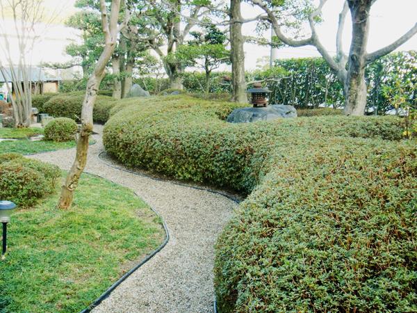 曲線が美しいサツキメインの庭園【剪定】-大阪府吹田市I様邸