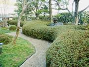 曲線が美しいサツキメインの庭園【剪定】-大阪府吹田市I様邸の詳細はこちら