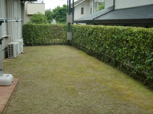 生垣と芝生の丁寧な仕事【剪定】-大阪府豊中市F様邸
