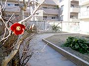 野菜作りを楽しむ庭 – 大阪府豊中市 F様邸の詳細はこちら