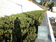大阪府豊中市 シェフ・カワカミ様邸の詳細はこちら