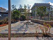 照り返しの少ない家庭菜園のあるお庭 – 大阪府豊中市 O様邸の詳細はこちら