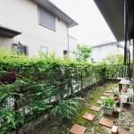 施工前:日当たりが良くなく生垣の生長が悪く、透け透けになっていました