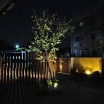 電球色のライトが庭を照らします