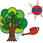 ガーデンエクステリア資料室「樹木にとって最も過酷な7月、8月」
