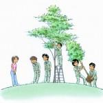 18日:プロが教える植木のさんぱつ教室