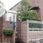 暖蘭物語と建物のフェンスがマッチしています
