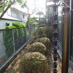 施工前:植栽が邪魔して歩きにくくなっています