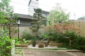 落ち着きのある和風の庭