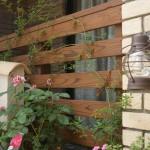 プロバンス風笠木と タンモクのウッドフェンスに絡めたモッコウバラ