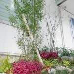玄関との高低差を植栽で演出