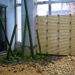 シダ植物とアルミ竹で手入れ要らずの庭に