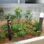 かわいい水栓柱と照明