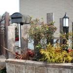 アプローチ横の植栽スペース