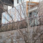 眺めの良いテラス、街路樹もお庭に取り込んで