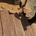 雨が降るたび土が流れ出るとお悩みの階段横スペースも