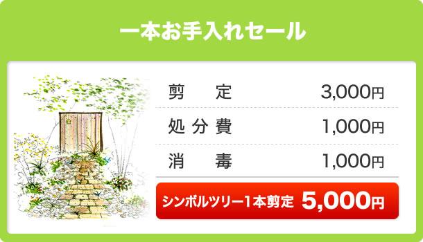 一本お手入れセール シンボルツリー1本剪定5,000円