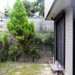 施工前:樹木も大きくなりそのままにしていた状態