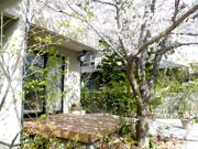 春が待ち遠しくなるお庭〜高石市S様邸