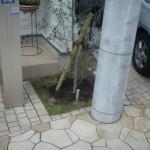 玄関前の植栽スペース 施工前
