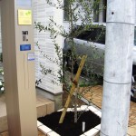 玄関前の植栽スペース 施工後