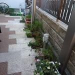 施工前:日当たりが悪く植物が育ちません