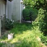 ビフォー:伸び放題の雑草