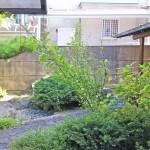 アプローチ横の施工前:植栽が転々としています