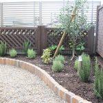 既存のラティスフェンスに合うオリーブを植栽し、周りにはハーブ系や斑入りのグミでクールにまとめました♪