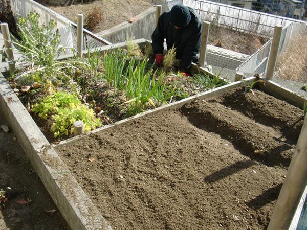 菜園施工事例1