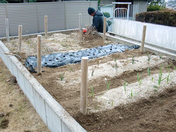 菜園施工事例2