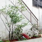 にぎやかな植栽スペース