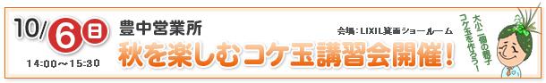 2013年10月6日(日)開催「秋を楽しむ苔玉講習会のお知らせ」