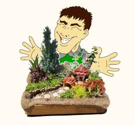 キン小庭こと、造園スタッフ金大茂が担当します。