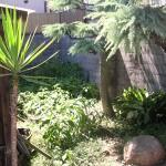 施工前:もう一つの裏庭です。