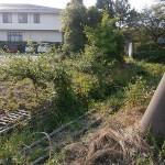 施工前:草が生え手入れができない状況でした。