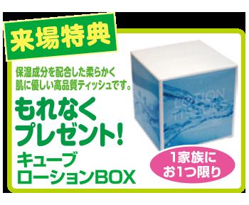 キューブローションBOXをプレゼント!