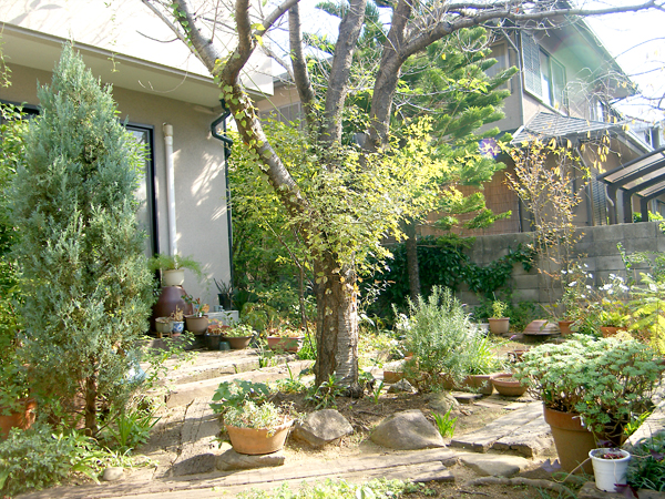 春が待ち遠しくなるお庭 – 大阪府高石市 S様邸の施工前