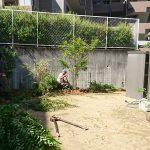 施工前:植栽と花壇のみのお庭でした