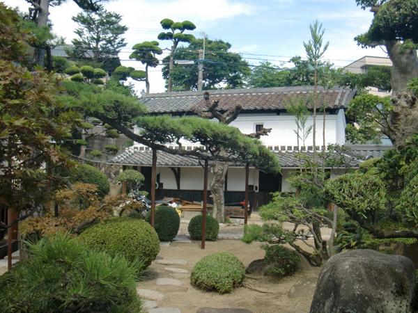 代々受け継がれる庭の中心にある松【剪定】-大阪府豊中市K様邸