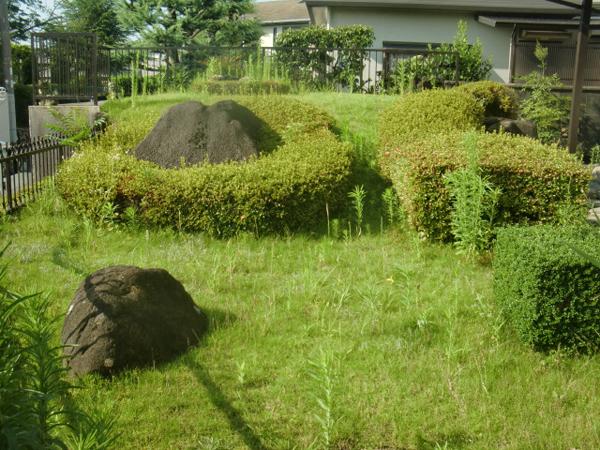 メンテナンスが大切な刈り込みと芝生のお手入れ【剪定】-大阪府吹田市K様邸の施工前