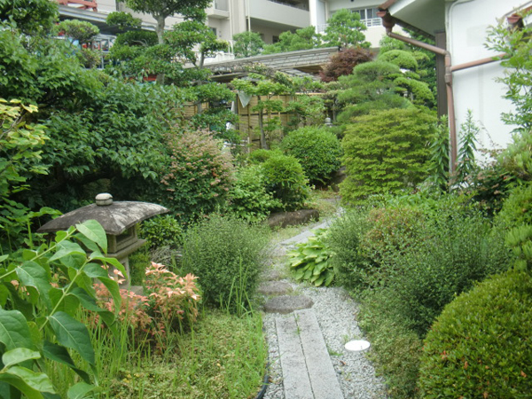 先代の庭を守る【剪定】-大阪府豊中市K様邸の施工前