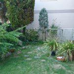 施工前:樹木が大きくなり、雑草が生い茂って手入れが大変でした