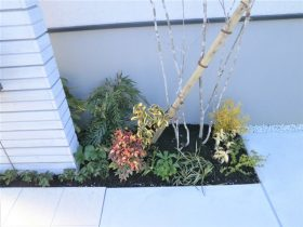 門柱横に植栽することでナチュラルさもプラス