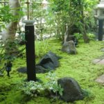 弊社が施工した和風庭園に苔を施され、雰囲気のある苔庭に。